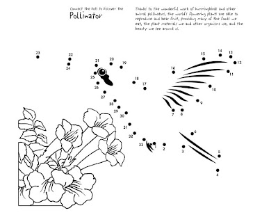 Hummingbirds for Kids. Fun Facts and Activities |Hummingbird Nest Coloring Page