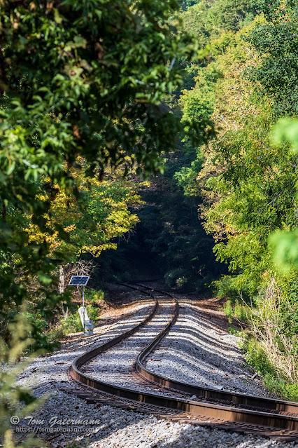Looking westward along the Finger Lakes Railway's mainline