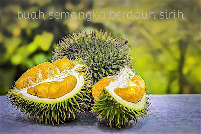 Tips dan Cara Memilih Durian Berkualitas Harum dan Manis