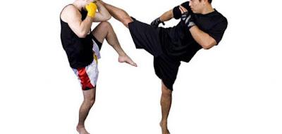 فوائد رياضة الفنون القتالية المختلطة