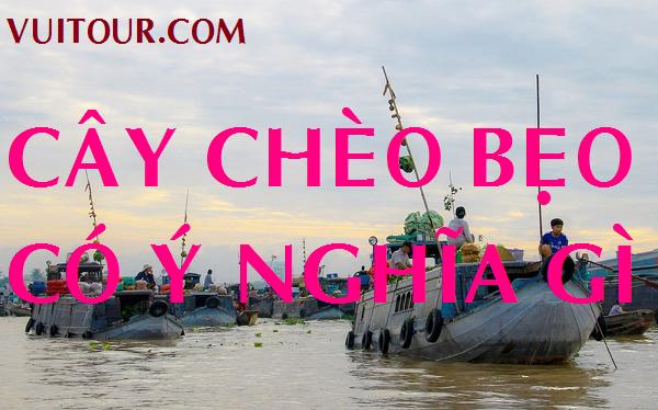 Cay Cheo Beo o Cho Noi Mien Tay