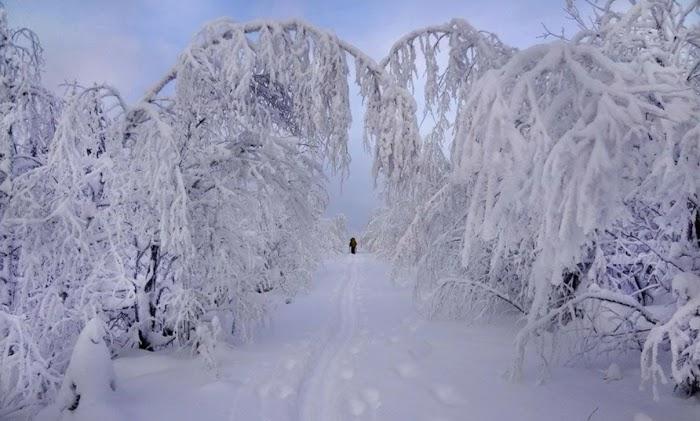 Весь февраль, как одна большая белая полоса для трех знаков Зодиака