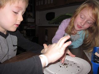 Two students observing worms.