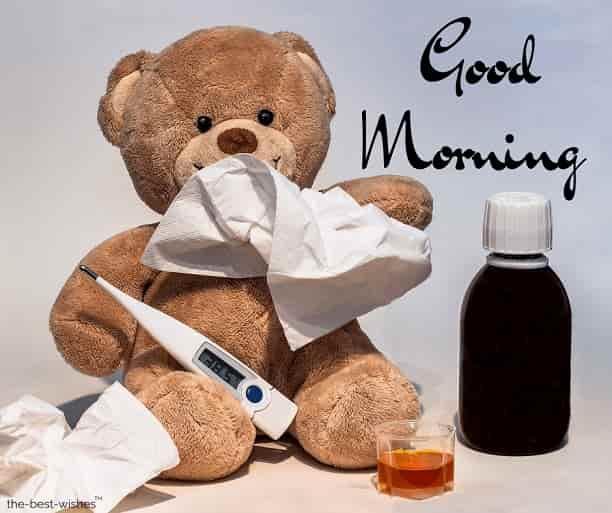 teddy bear falls sick