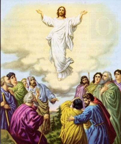 Paroki Hati Yesus Yang Mahakudus Katedral Makassar Makna Kenaikan Tuhan Yesus Ke Surga Dan Dampaknya Bagi Umat Manusia