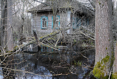 Spring in the Chernobyl exclusion zone