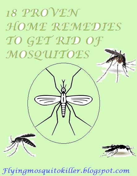 How to get rid of Mosquitoes: 18 PROVEN EFFECTIVE HOME