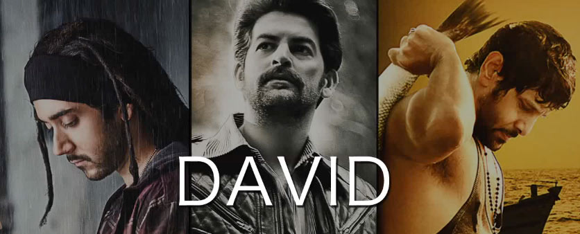 David Hindi Movie - Full Song Lyrics (2013)