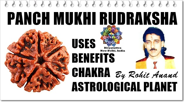 Benefits of PanchMukhi Rudraksha, Can I Wear? Checking if Its Genuine