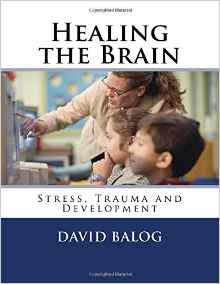 Healing the Brain -- available on amazon.com