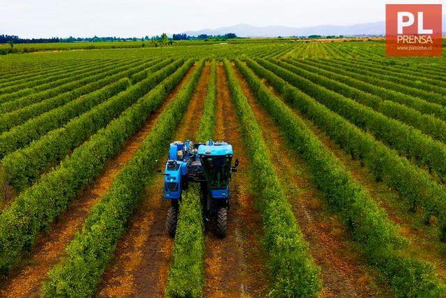 Sistema Eficiente y Sostenible marca tendencia en la industria agrícola