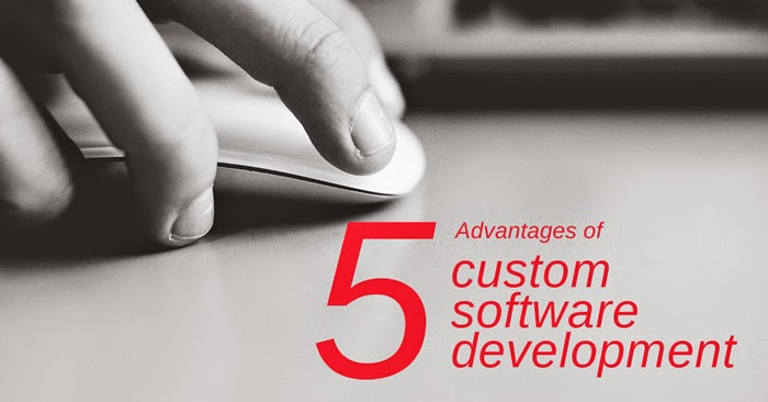 advantage and disadvantage of custom written software