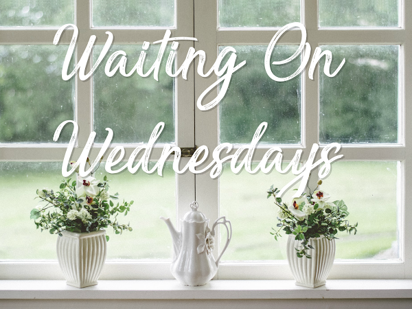 Waiting on Wednesday (10): The Trouble With Hating You by Sajni Patel & The Marriage Game by Sara Desai
