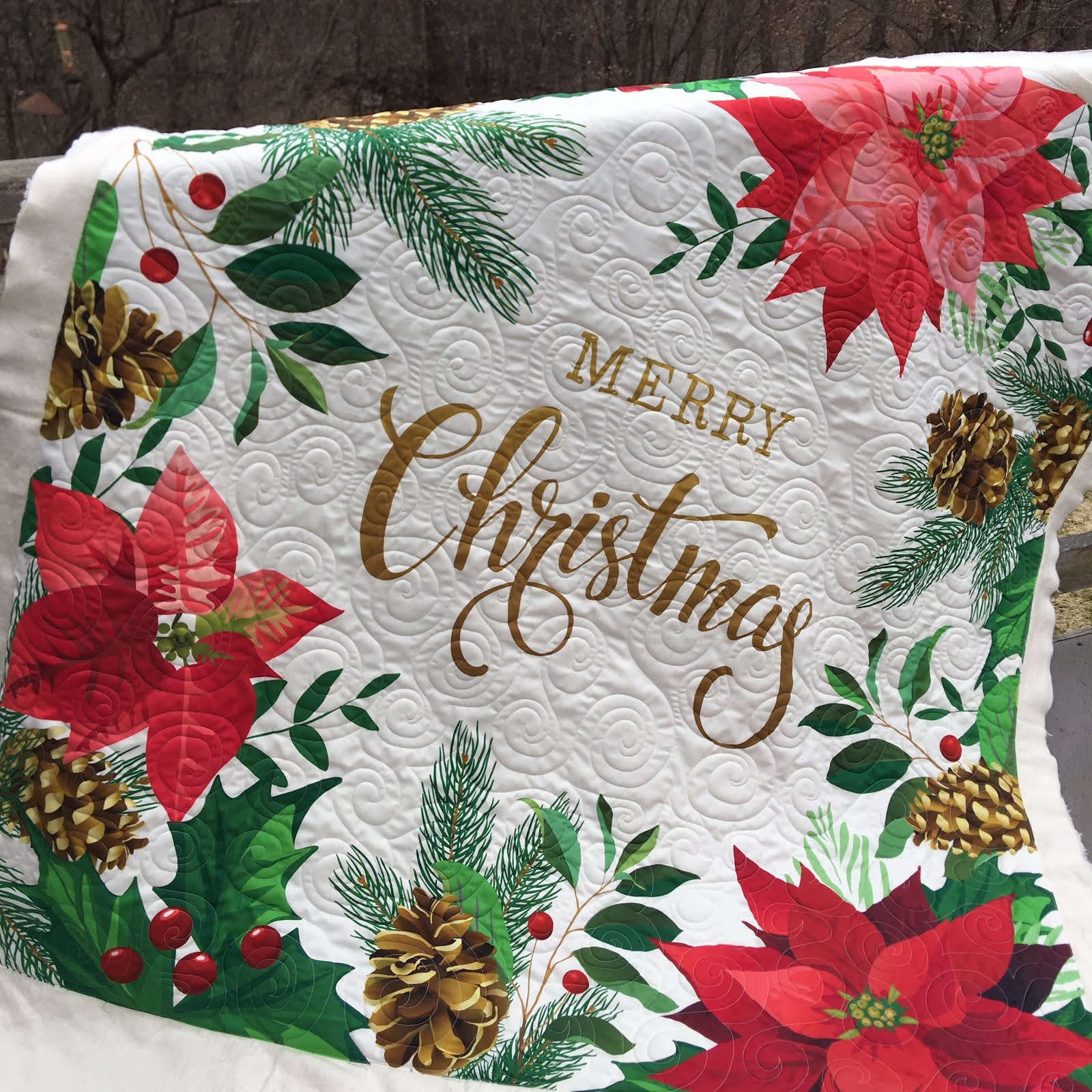 Christmas Quilting Fabric 2020 Grace and Peace Quilting: Kyle's 🎄Christmas Panel 🎄 Number 2 ⼆