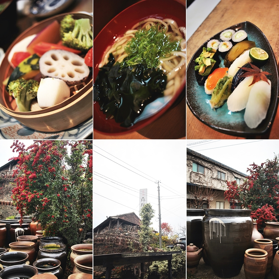 japan vegan local food guide blogger travel