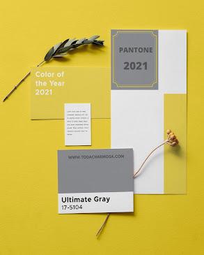 pantone 2021 coty Ultimate Gray e Illuminating