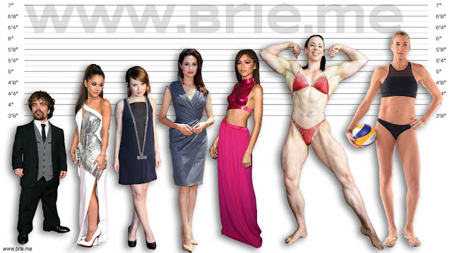 Peter Dinklage, Ariana Grande, Emily Browning, Angelina Jolie, Zendaya, Maria Wattel, and Kerri Walsh Jennings height comparison