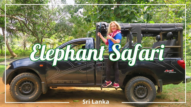Elephant Safari no Sri Lanka
