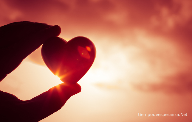 El corazón del verdadero amor