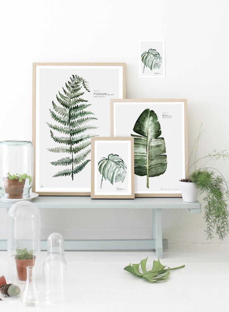 inspiracion-greenery-pantone-laminas-botanicas-decoracion-mydeerartshop
