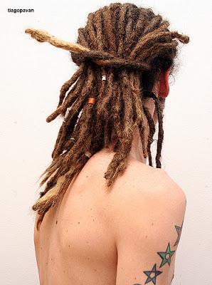 rastas pelo castaño