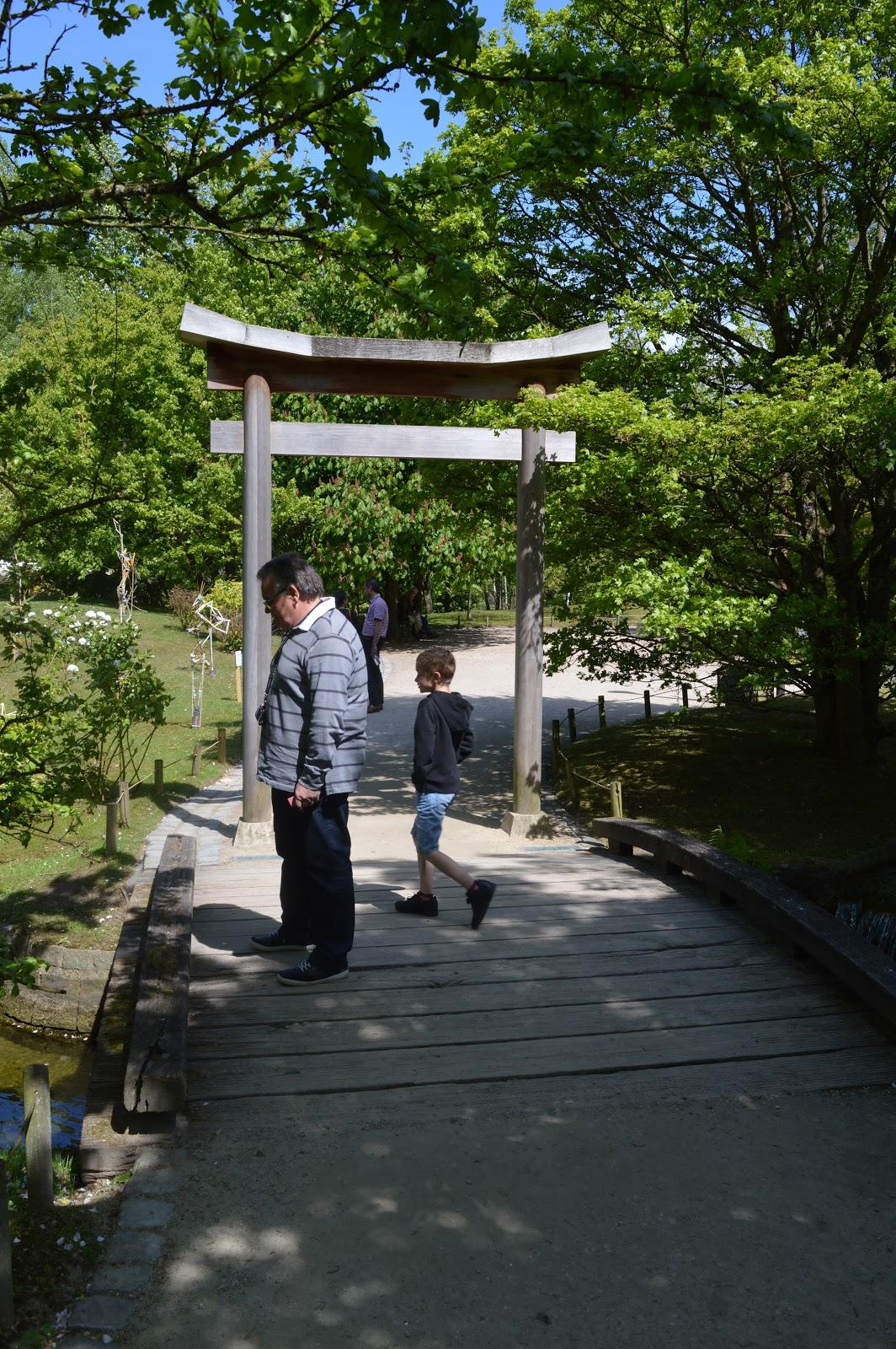 Passionn ment jardin visite du jardin japonais de hasselt for Jardin japonais hasselt 2016