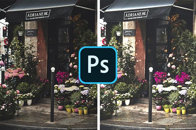 duas fotos de uma paisagem de floricultra uma clara e outra escura