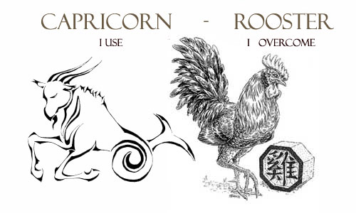 Capricorn Rooster Personality Traits | Capricorn Life