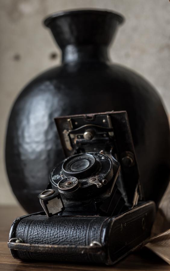 fim.works | Fotografie. Wortakrobatik. Wohngefühl | Prächtige barocke-Rosen