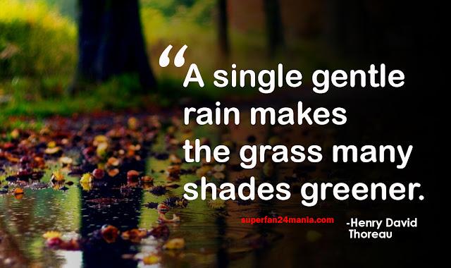 A single gentle rain makes the grass many shades greener.