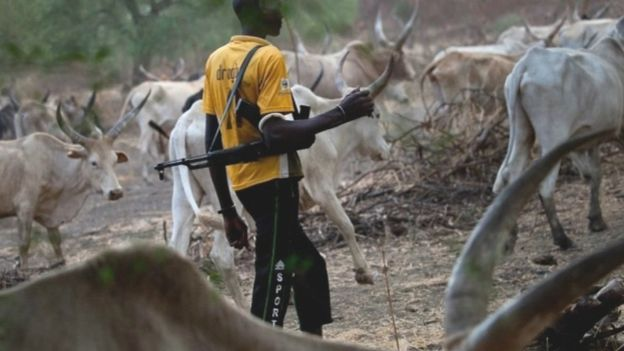 Criminal Fulani herdsmen will be wipe out from Kwahu – MP fumes