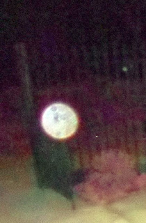 orb at gate