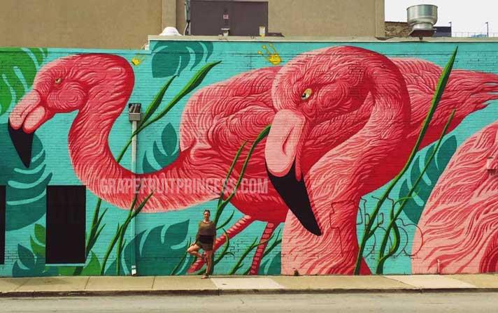 Flamingo Mural Chicago