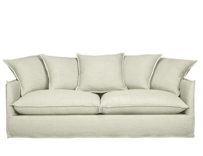 Bromeliad: Macy's Furniture Sale