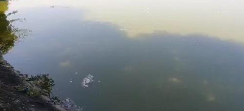 Tranh chấp hồ Goong, em rể ông Hà Thanh Tĩnh - PCT TP Vinh được chọn