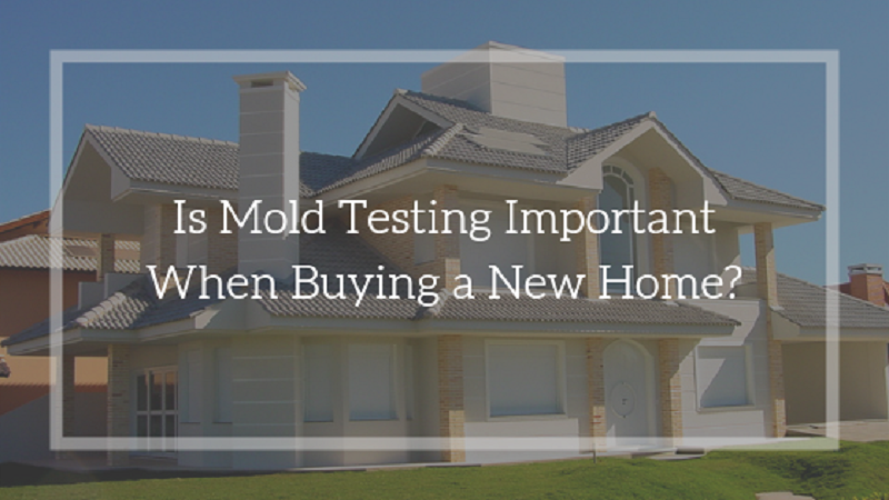 Mold Testing Important When Buying a New Home