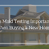 Is Mold Testing Important When Buying a New Home?