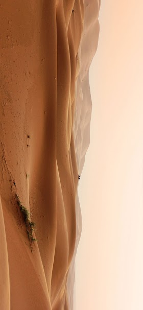 Sahara wide hills wallpaper