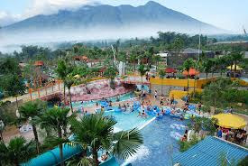 """The Jungle Waterpark Adventure"""