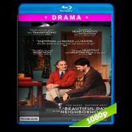 Un buen día en el vecindario (2019) HD BDREMUX 1080p Latino