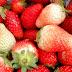 José Roberto destaca potencial na produção de morango e amora em Jussiape