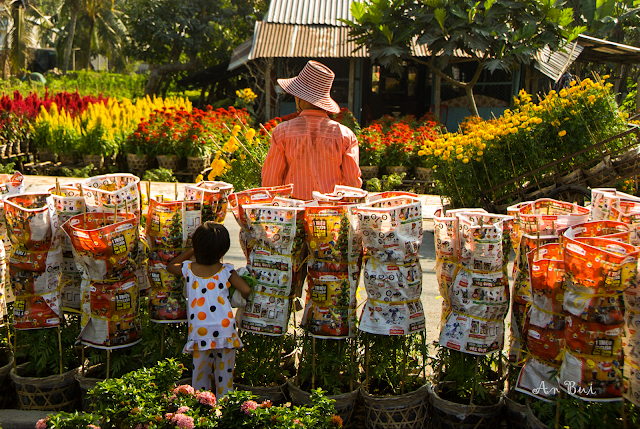 Sa Dec Flower Village - Làng Hoa Sa Đéc