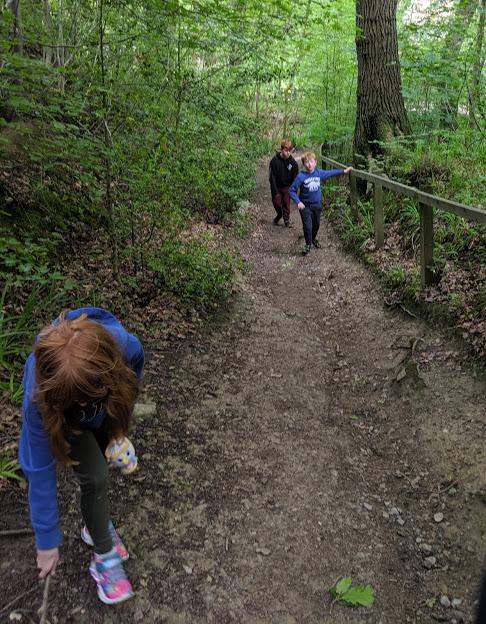 Falling Foss Tea Garden (near Whitby) - climb down the path to the tea garden