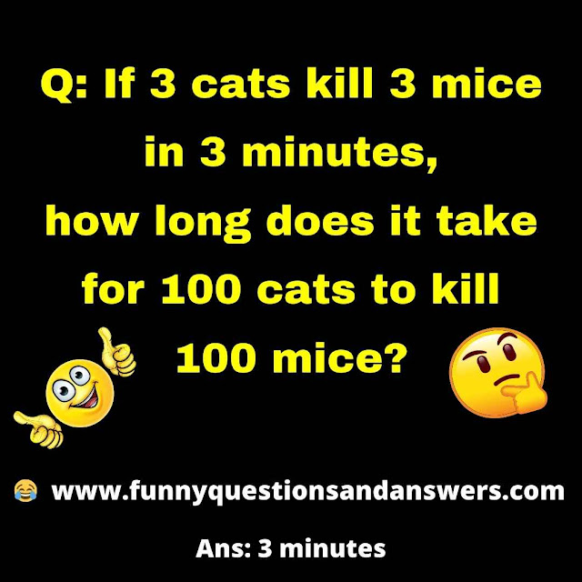 If 3 cats kill 3 mice in 3 minutes, how long does it take for 100 cats to kill 100 mice?