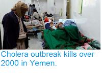 https://sciencythoughts.blogspot.com/2017/10/cholera-outbreak-kills-over-2000-in.html