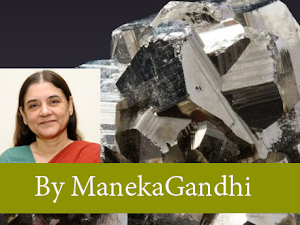 We humans have always considered ourselves different from every other species on Earth, writes Maneka Gandhi