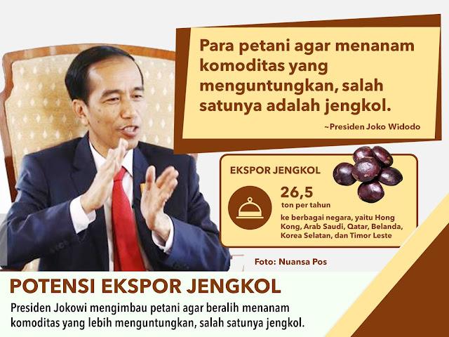 Jokowi imbau petani tanam jengkol