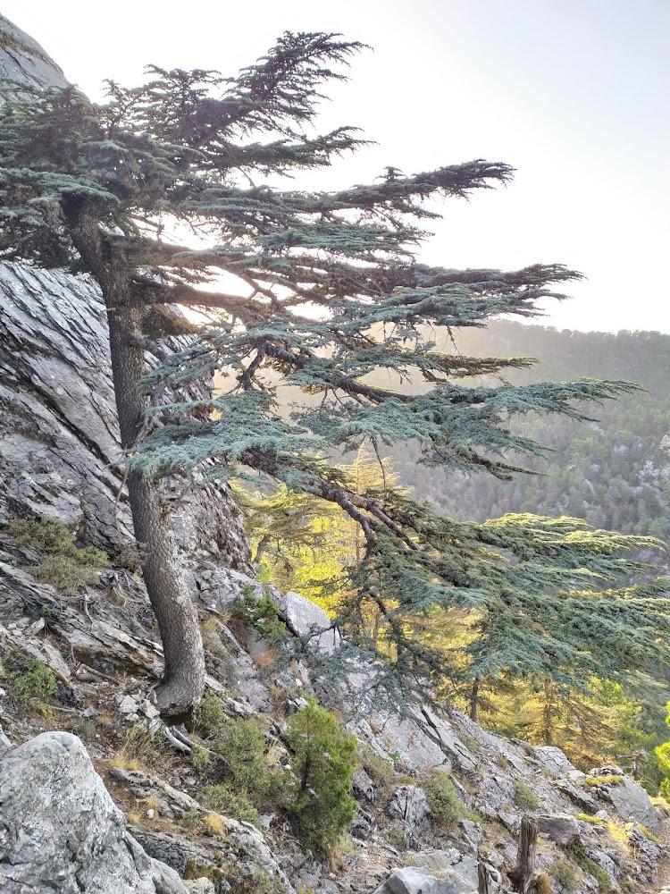 Ликийская тропа, 368 км от Гейкбаири до Фетье. Октябрь 2020.