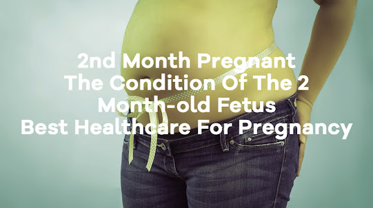 2nd Month Pregnant - The Condition Of The 2 Month-old Fetus - Best Healthcare For Pregnancy