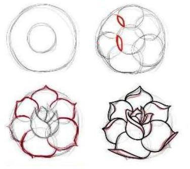 Sketsa Bunga Rose Ros Drawing Pictures Wwwpicturesbosscom